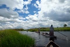 delta reky okavango kolama dolu