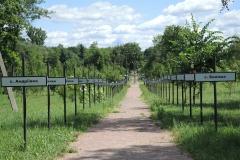 160 objeti cernobylu